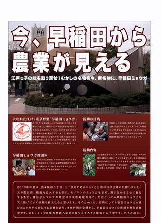 早稲田農業 (2).jpg