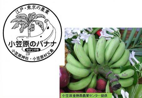 1-1バナナ.jpg