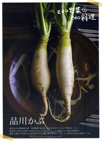 1-1品川カブ.jpg