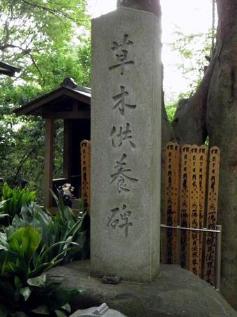 1-1草木.jpg