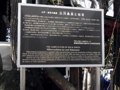 1-2峡田 (3).jpg