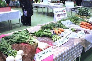 3-1区民農園で栽培した江戸東京野菜.jpg