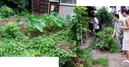 5農園.jpg