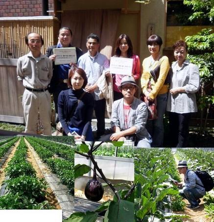 5農園樋口.jpg