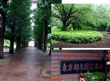 園高1.jpg