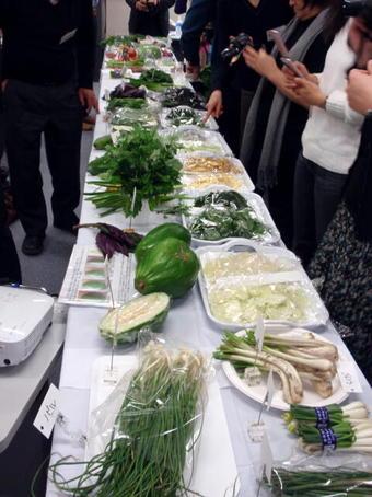 沖縄野菜.jpg