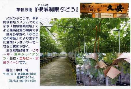 中村葡萄 (1).jpg